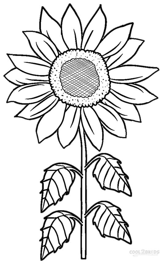 free student plant coloring pages - photo#43